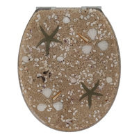 Sand and Shell Clear Soft Close Toilet Seat